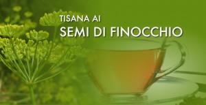 tisana_semi_finocchio